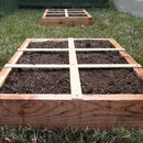 garden-beds-ready.jpg
