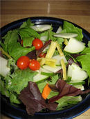 garden_salad3.jpg