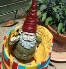 gnome_in_bucket.jpg
